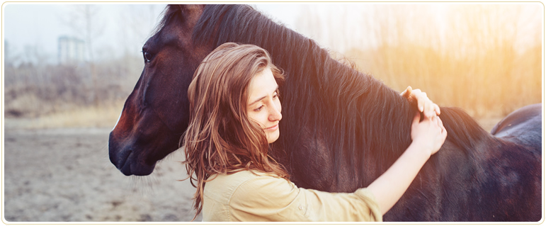 Edmonton Pet Memorial Services, horses and large animals